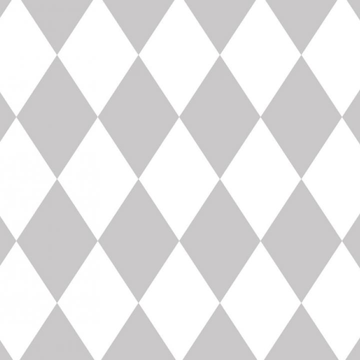 MINI ROLLITO de 70 cm x  2 m  GRIS
